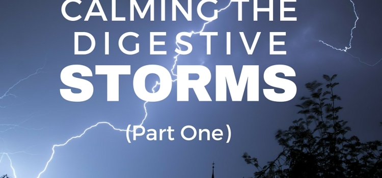 Calming The Digestive Storms (Part 1)